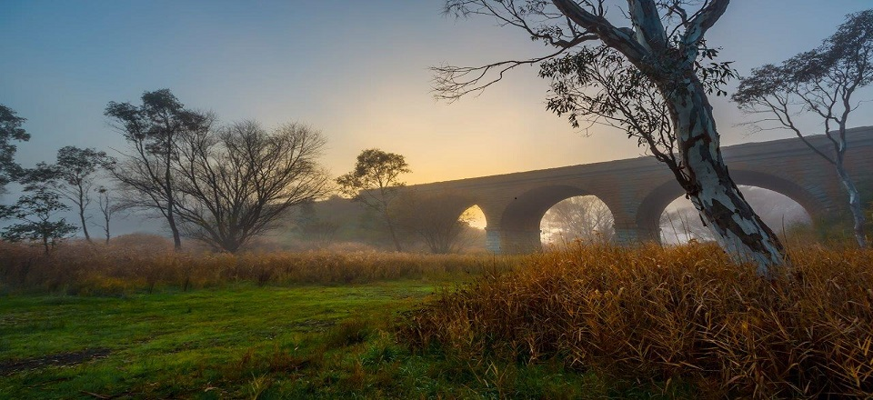 Historic railway viaduct in Harcourt. Photo by Richard Baxter Photography.
