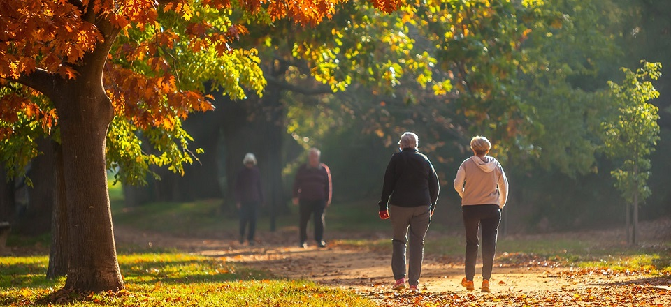 Image: People taking an early morning walk in the botanical gardens.   Link to child page: Managing your health and wellbeing