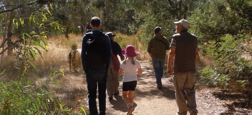 Image: Bushwalk  Link to child page: Get involved