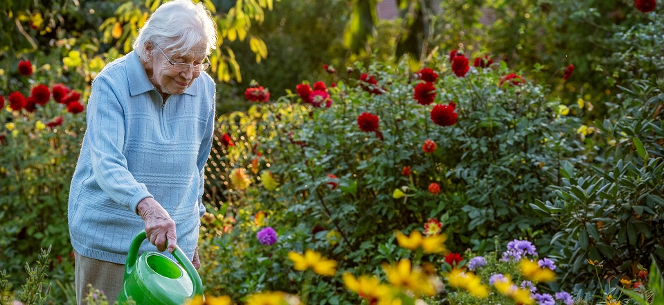 Image: Older women watering flowers in the garden  Link to child page: Commonwealth Home Support Services