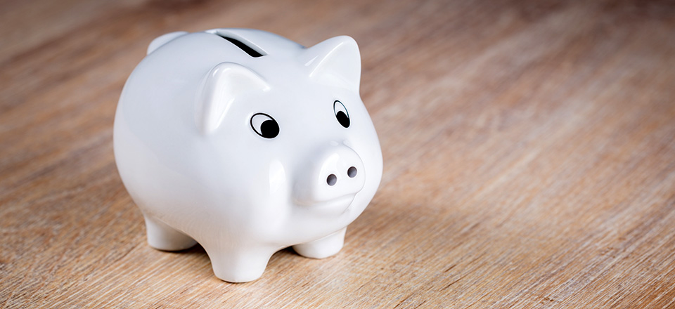 Image: Piggy bank  Link to child page: Payment options
